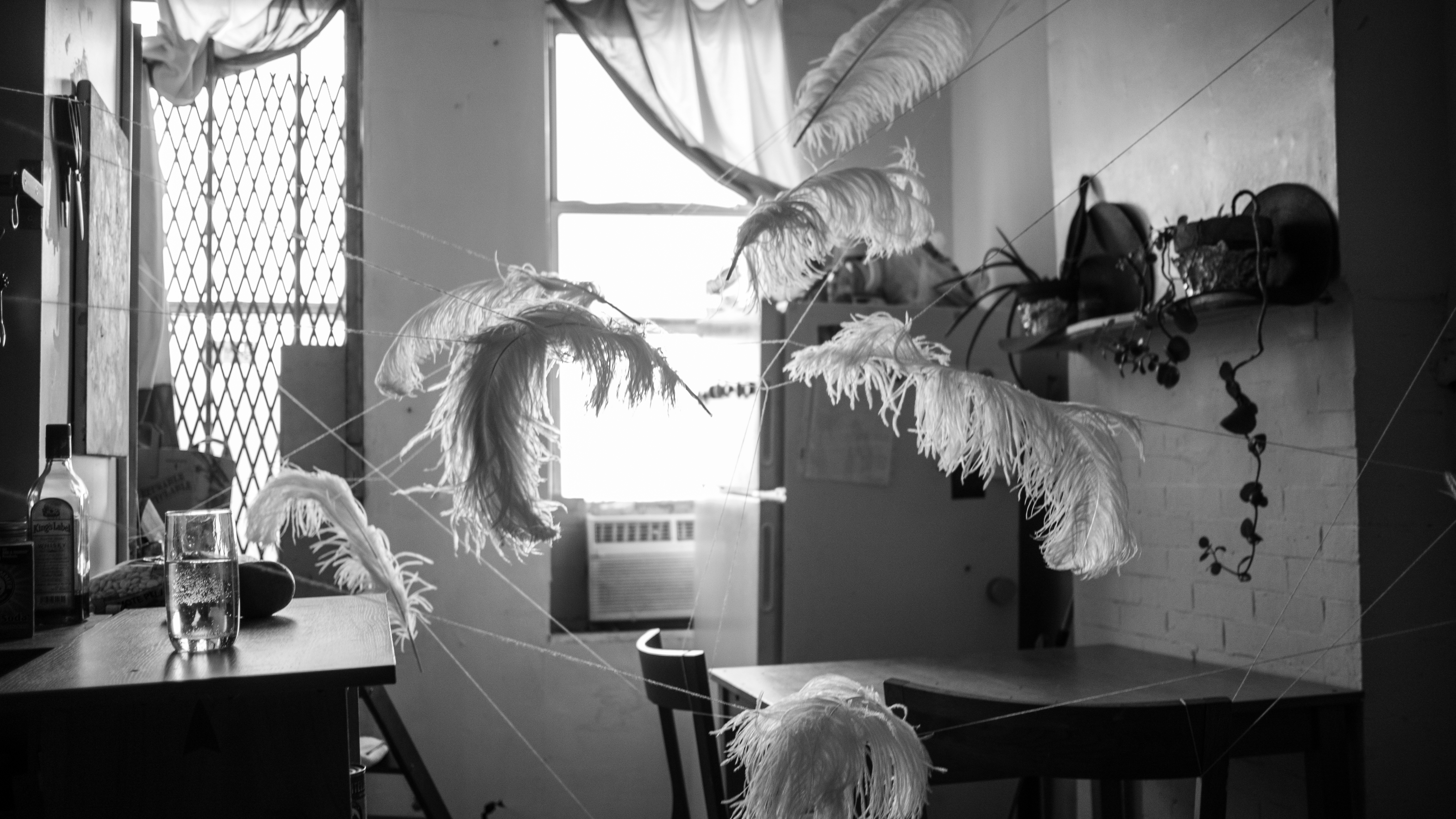 feathers installation whitney biennale (10 of 10)