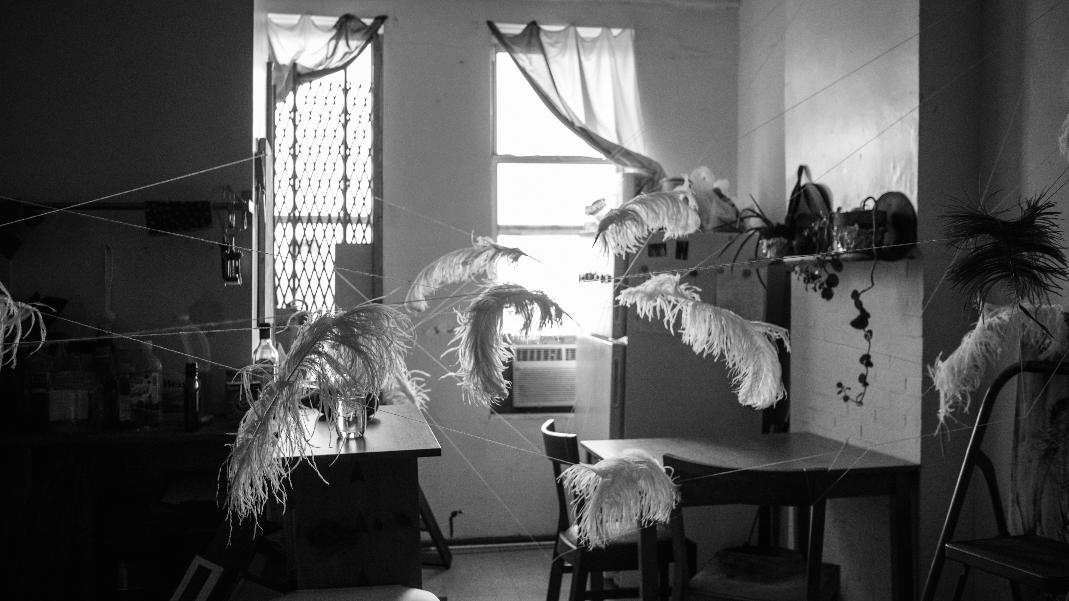 feathers installation whitney biennale (5 of 10)