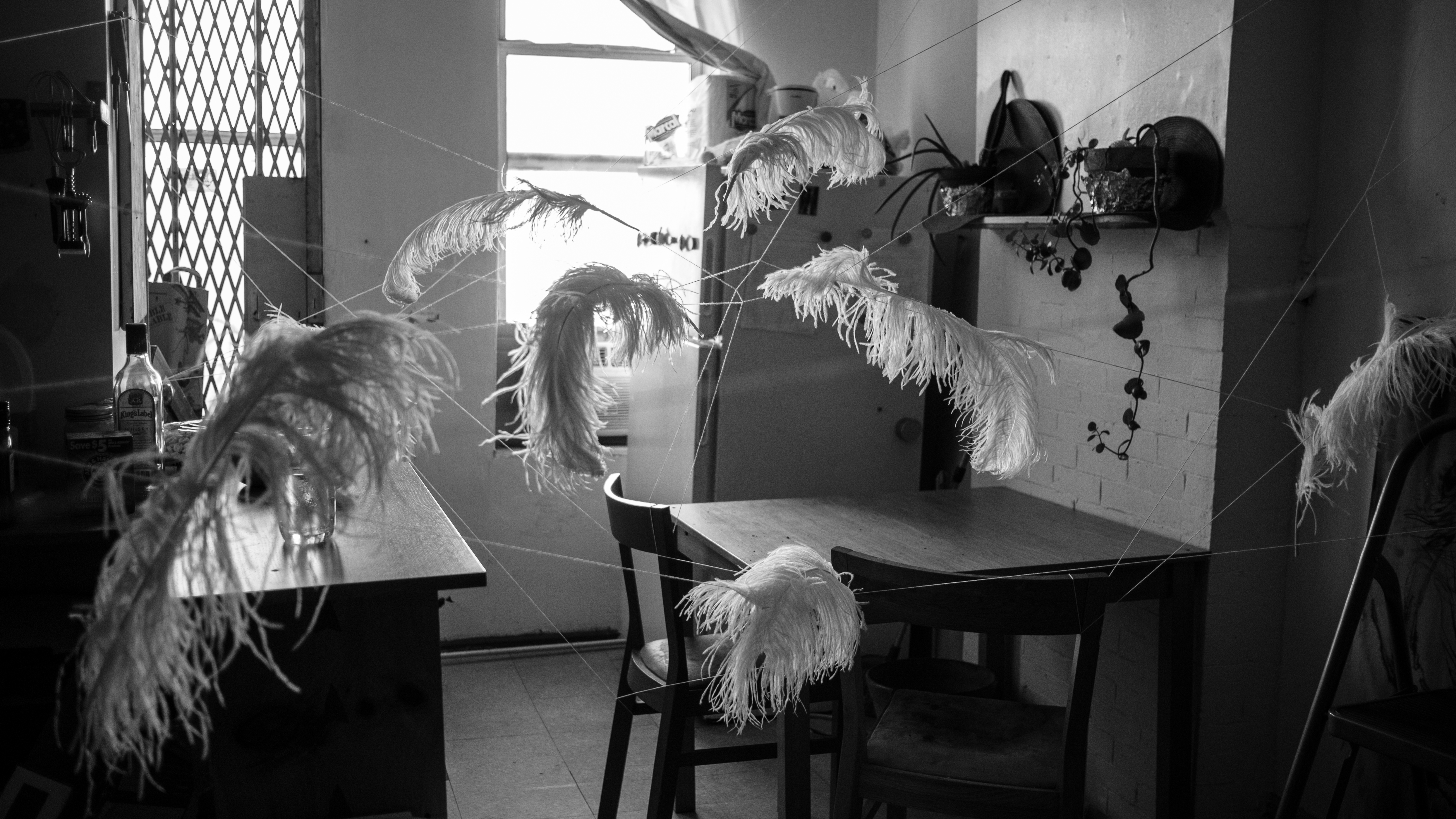 feathers installation whitney biennale (8 of 10)
